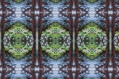 Abstracted woodland embroidery, kaleidoscope design