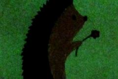 Hedgehog embroidery in the dark